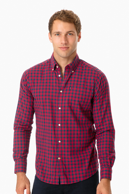 barbour red dalton button down